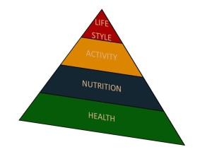 HealthPyramid